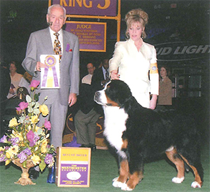 2007年ウェストミンスタードッグショー